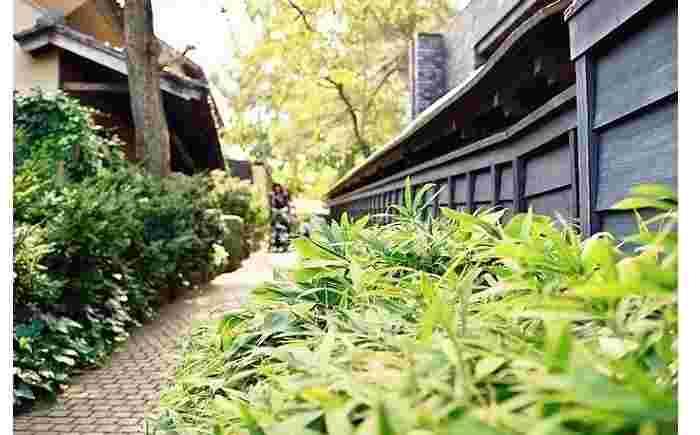 栗の木のブロックが敷かれた小径では、歩くたび、ブロックが、足元で優しい音を立てます。
