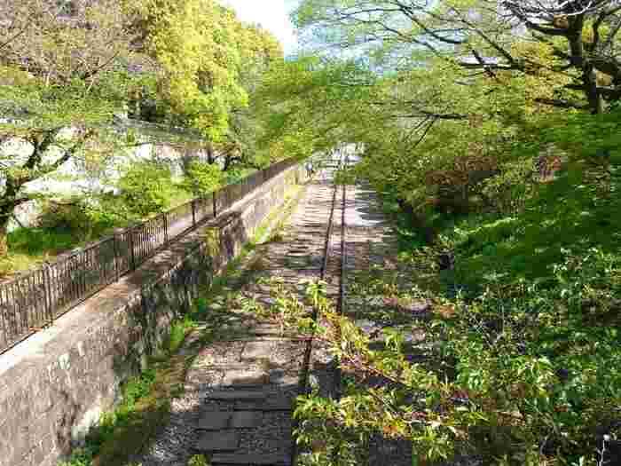 南禅寺のすぐ近くにある蹴上インクラインは、琵琶湖疎水の舟運ルートの傾斜鉄道跡です。現在は、国の史跡となっており、南禅寺参拝と併せて訪れる人が多い岡崎エリアの人気観光スポットとなっています。