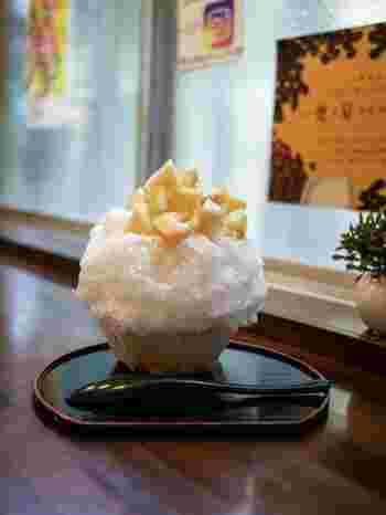 ご紹介したお店は地下鉄の各駅から徒歩圏内。食べ歩きをする際は大阪メトロの1日券が便利です♪ぜひお友だちと一緒に、いろんなかき氷を食べ歩きしてみてくださいね。