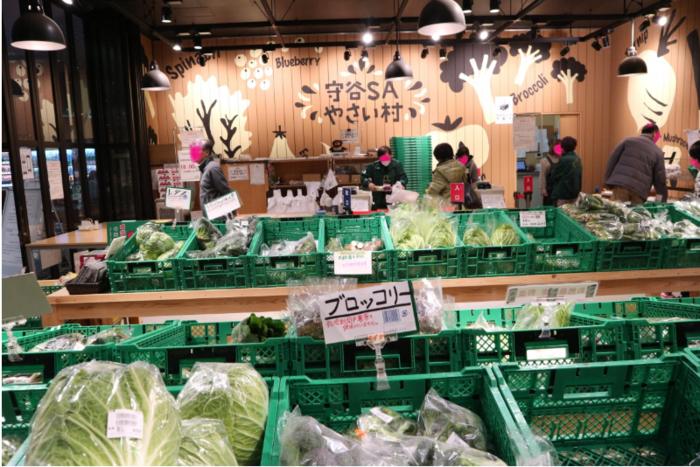 当サービスエリアに立ち寄るのなら、真っ先に向かうのは「守谷SAやさい村」です。  「やさい村」は、地元守谷で収穫された新鮮野菜や果物、手作りの漬物等が並ぶ産地直売所。リーズナブルな価格で種類も豊富と評判です。夕方には品薄になるので、野菜を購入するのなら、いの一番に向かいましょう。