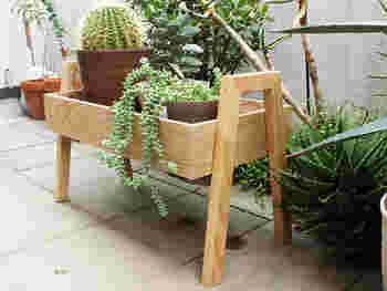 日に日に勢いを増す植物たちも楽しみたいもの。グリーンの映えるグッズを揃えておきましょう。