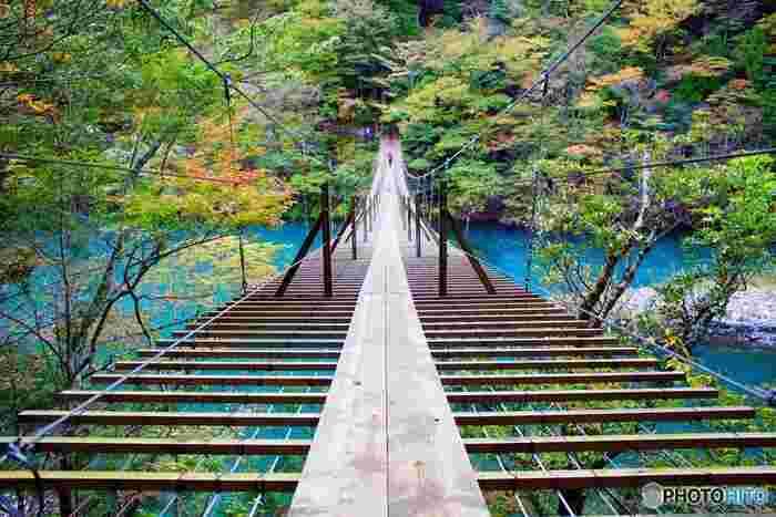 川面からの高さ8メートル、長さ90メートルの吊橋に敷かれた板と板の間隔は広く、吊橋を渡っているとまるで川の上を歩いているかのような気分を覚えます。