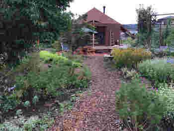 バラ、コスモス、ナスタチウムやヤマボウシ……季節の花々がガーデンを色鮮やかに彩ります。  席を待つことがあっても、ぶらぶら庭を散策したり、のんびり過ごせそうですよね♪