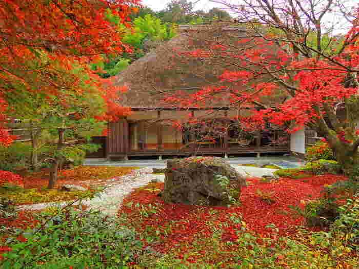 静かな竹林に囲まれた「直指庵」は、「大覚寺」から北へ1km程。嵯峨最北に位置する小さな庵です。 山間の自然風景に溶け込んだ檜皮葺の建物や、石仏を訪ね歩けば、心静かな一時を味わえます。忙しい日々の中で、心静かな時を持てない方に訪ねて欲しい寺院です。