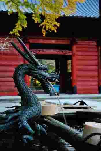 手水舎の水神様もフォトジェニックですね。門の朱色や紅葉とのコントラストに、つい、シャッターを押したくなります。