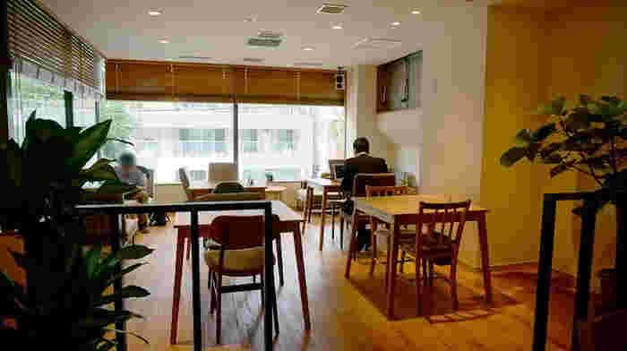 店内は木のぬくもりと優しい光に包まれた暖かい空間。幅広い客層の人々が訪れます。