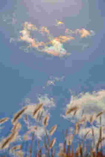 仏教的に特別な時によく見られる現象として認識されていて「景雲」や「慶雲」、「瑞雲」などとも呼ばれています。