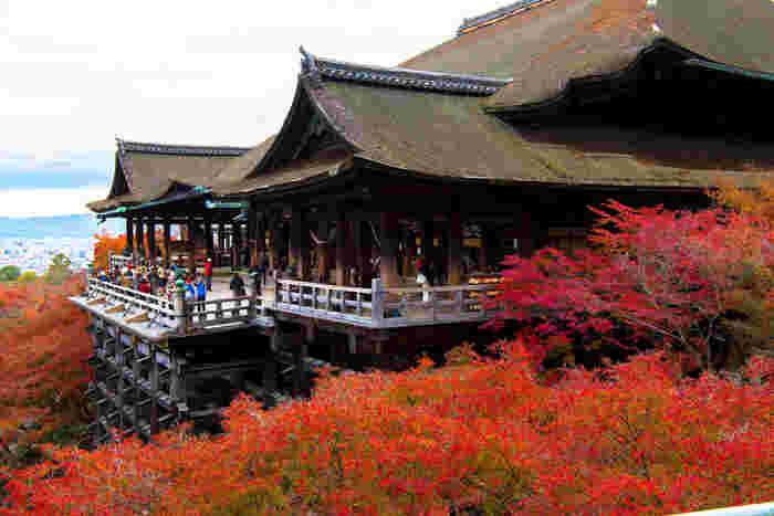 """【""""清水の舞台""""として知られる世界遺産・清水寺の本堂。清水寺は多くの観光客が訪れる、京都を代表する名所。春の桜、秋の紅葉の名所としても有名。】"""