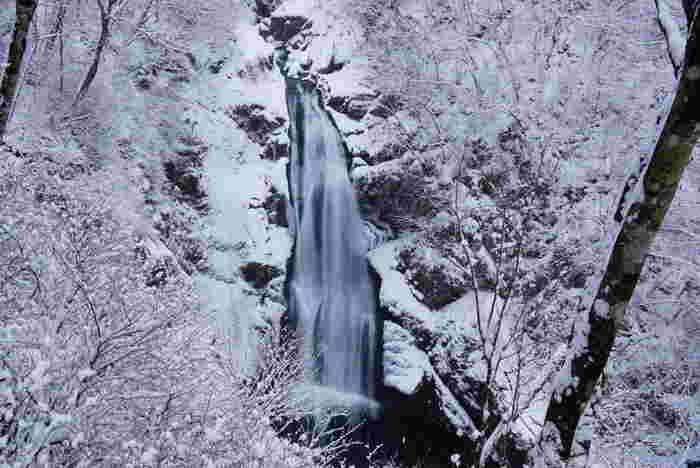 雪とのコラボレーションんが幻想的な風景。雄大なモノクロの世界は、寒さを忘れて見とれてしまいそうな美しさです。