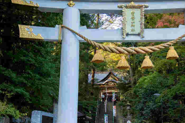 秩父鉄道の長瀞駅からまっすぐ歩いて10分ほどで到着する「宝登山神社」は、火災盗難よけ・諸難よけの守護神としての御神徳が高く、地元はもちろん遠方からも参拝者が訪れ、その数は年間100万人を超えるそう。木々に囲まれた神社の静謐な雰囲気は、心が清らかになります。