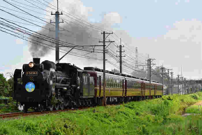 秩父鉄道が秩父本線の熊谷駅‐三峰口駅間で運行している「パレオエクスプレス」は、今から30年ほど前から運行しているSLです。首都圏から1番近くで乗れると、鉄道ファンだけでなくカメラ女子にも人気。通常は、土日に運行されているので、事前に運行スケジュールを確認しておくのがおすすめです。