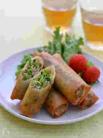 挽肉とたっぷりの豆苗で作る春巻きは、最初に具材を炒める必要がないので手間なく作れます。豆苗は栄養たっぷりな再生野菜!上手に使ってアレンジレシピを増やしておくと便利な野菜です。