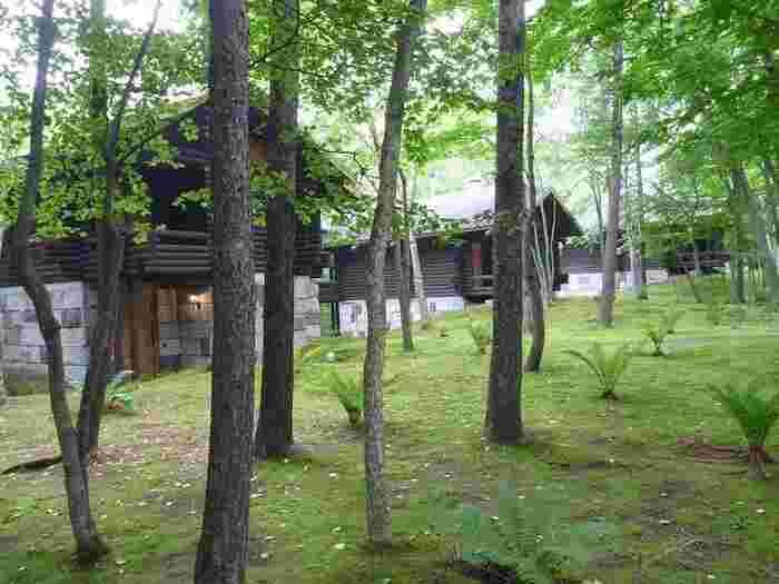 川沿いの静寂の森に佇む2階建てコテージ「HOTEL NIDOM」