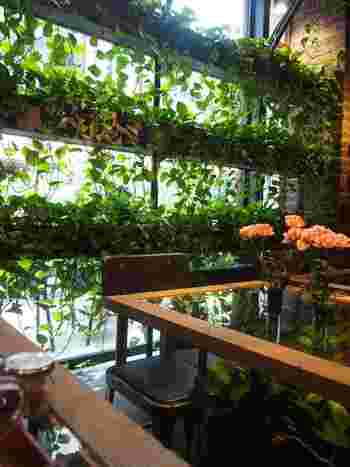 いかがでしたでしょうか。今回の記事を参考に、緑に囲まれたカフェを訪れて癒やしのティータイムをお過ごし下さい。