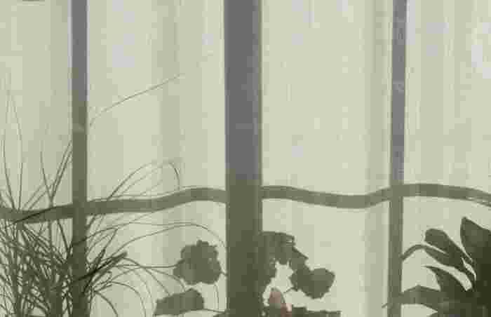 お部屋に小さな緑を。「ミニ盆栽」を育ててみませんか?