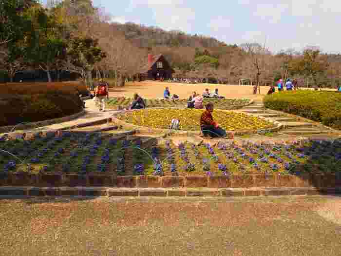 二上山麓に広がる二上山ふるさと公園には、日本庭園風の太鼓橋、広い芝生、ピクニックスペース、アスレチックスペースなどがあり、大人から子供まで幅広い年齢層の人々で賑わっています。