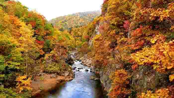 札幌近郊より40分程度で行ける温泉地・定山渓。ゴツゴツとした岩山と、錦色にきらめく紅葉の組み合わせが美しい渓谷です。