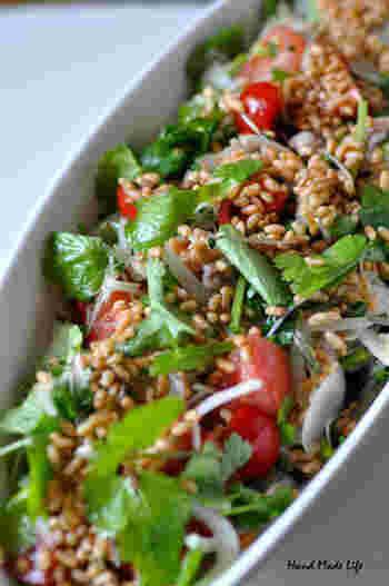 ポリポリ、カリカリとそのままでもおやつのように食べられる炒り玄米。そんな香ばしい炒り玄米をたっぷりとトッピングしたパクチーサラダ。食感の楽しさと風味高さでいくらでも食べられる、新鮮な味わいです。