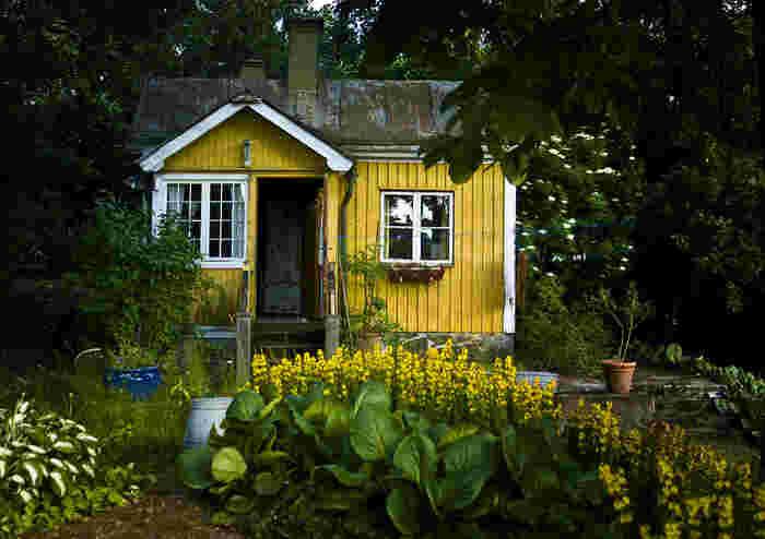 家の外観の色はなかなか挑戦しにくいものですが、大胆な色もタイニーハウスならやりやすい!自分の好きな色にしてみましょう。小さいお家だからこそ可愛く仕上がりますよ。