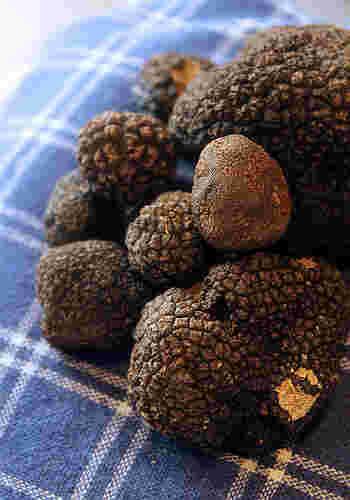 黒トリュフはフランス産が特に人気です。加熱して食べる料理に向いていて、白トリュフよりも扱いやすく初心者にもおすすめ。普段の料理を少し格上げしたいときに活躍します。日本では、白トリュフはにんにくに、黒トリュフは海苔の佃煮に例えられることが多いです。