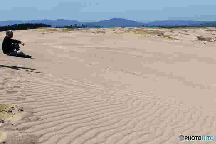 砂丘は、まさに自然が作り上げた美。その日の風の強さや向きなどによって、日々違った表情を見せてくれます。  例えば5~6メートルの風が吹くと姿を現す風紋は、砂丘を代表する絶景。まさに、自然が作り出した芸術で、波のような紋様が砂に美しく刻まれます。 「馬の背」の付近には、美しい風紋が作られることが多いそうなので、「馬の背」まで頑張って歩いたら、是非、周りを探して見て下さいね!