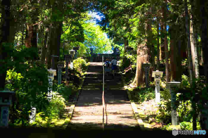 まっすぐ伸びた階段がある「最乗寺(さいじょうじ)」。紅葉の名所として知られていますが、青葉が茂る季節も味があります。