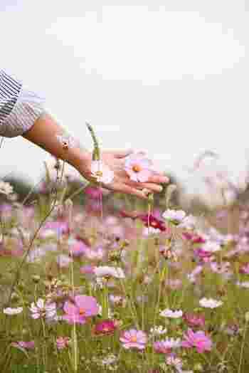 生きづらくなるほどの執着心やこだわりは、今の自分に本当に必要でしょうか?他人に求めるほど、人生において重要なことでしょうか?手放して楽になれるのなら、思い切って取捨選択してみてはいかがでしょう。