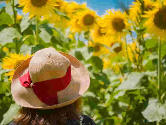 どのカタチにする?夏コーデを盛り上げる「麦わら帽」とコーデ集