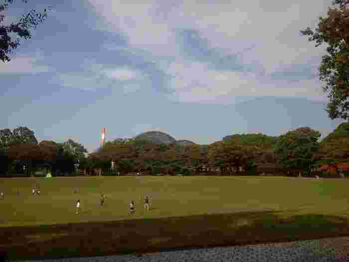 都心では贅沢なほど広い芝生には、休日になるとボール遊びやピクニックに訪れる方の姿が。無料で利用できるBBQエリアもあるので、さまざまな楽しみ方ができますね。