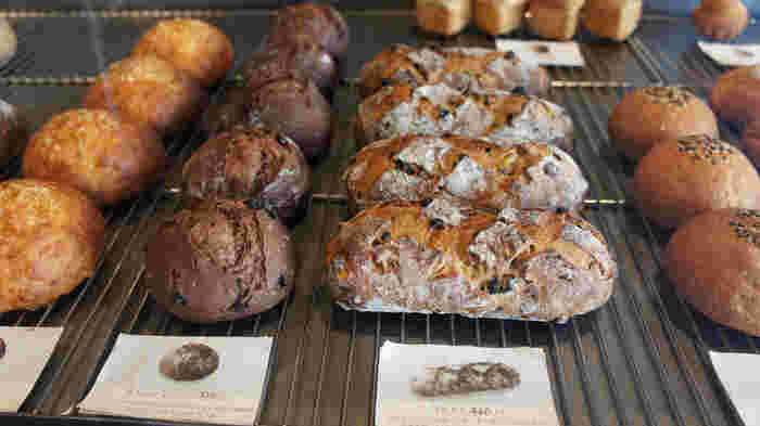 軽井沢で大人気のブーランジェリー「ハルタ 軽井沢店」。おしゃれな店内にたくさんの種類の焼きたてパンが並んでおり、みなさんついついたくさん買ってしまうのだとか。