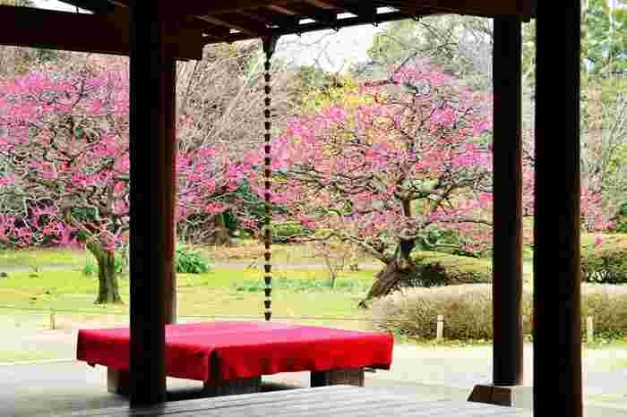 季節の移ろいを感じさせてくれるのが日本庭園の醍醐味です。都会の癒しスポットをたまには尋ねてみませんか?また、浜離宮恩賜庭園からは徒歩でも銀座や築地などが観光圏内です。合わせて訪ねてみるのもおすすめですよ。