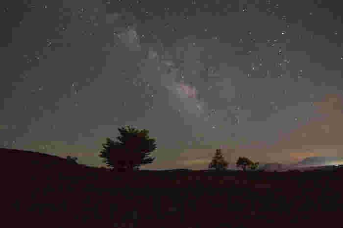 空気が澄みわたり、街燈が無い瀬の本高原では、日が暮れると空には満天の星々が煌めきます。天の川が見える星空は、まるで天然のプラネタリウムのようです。