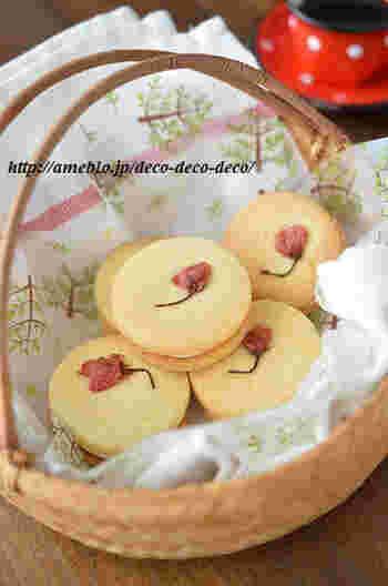 クッキー生地はフードプロセッサーを使って混ぜ合わせるので、あっという間に出来上がります。ほんのり桜の味がするチーズクリームは薄く挟むのが上品に仕上げるコツです。