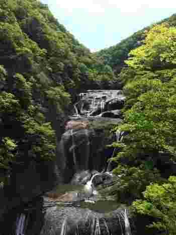 """日光の「華厳の滝」、熊野の「那智の滝」と並び日本三名瀑のひとつに数えられる「袋田の滝」。高さ120m、幅73mの大きさを誇り、大岩壁を四段に流れることから別名""""四度の滝""""とも呼ばれています。"""