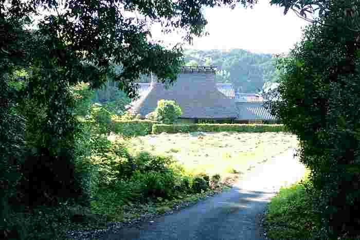 幸せを噛みしめよう。神戸の裏六甲にある隠れ家「はなとね」の絶品ベーグル