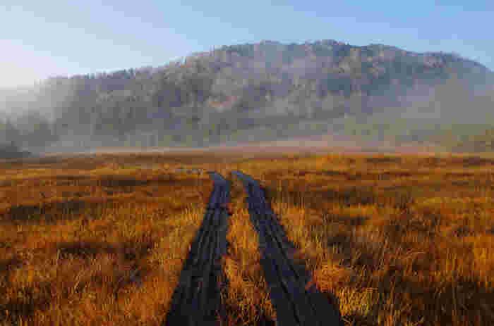 尾瀬といえばこの景色!一面の草紅葉と澄んだ空気を、思う存分楽しめます。特に早朝は朝靄がかかる幻想的な風景が見られることも。9月下旬でも冬並みに寒いので、防寒対策をしっかりしてお出かけくださいね。