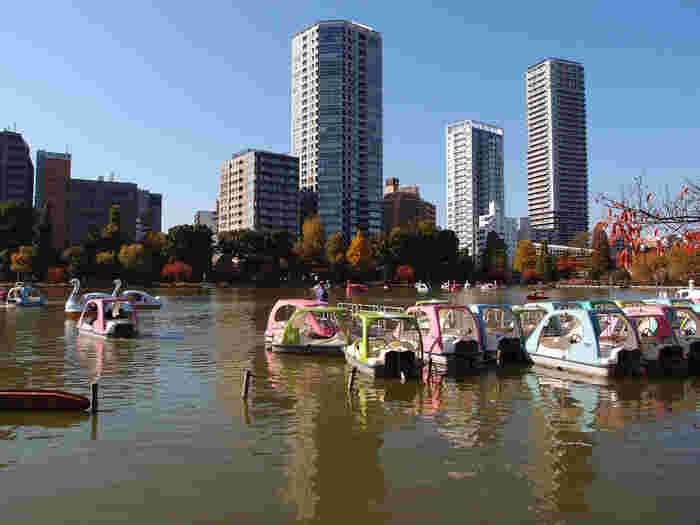 まる一日楽しめる「上野」観光。おすすめの《大人の遠足・社会科見学・グルメ》スポット