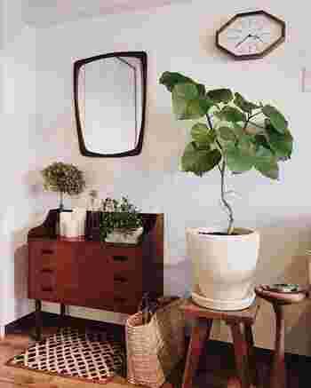 出かける前に鏡をチェック…というときに、目に入る場所に植物を集合!鏡の前に立つだけでなんだか元気をもらえるスペースになりそうです。
