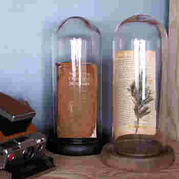 ガラスドームのメリットは、インテリアの天敵・ホコリから大切なアイテムを守ってくれること。 とくに細かい雑貨類や観葉植物など、ホコリのお手入れをするのって大変ですよね。そんなアイテムでもガラスドームを被せるだけでホコリがつくことはありません。