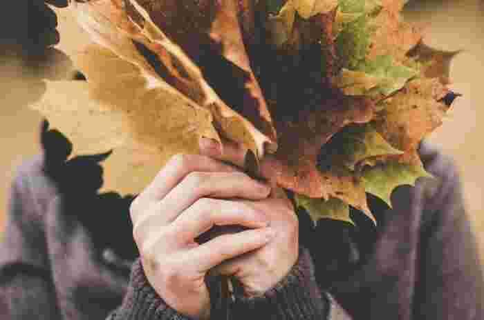 車でばかり移動しているとなかなか感じ取れない季節の移ろい。紅葉した木の葉を拾うことができるのもウォーキングならではの楽しみです。