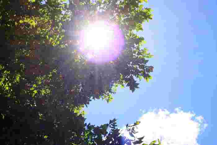 『フェイスカバー』で夏の外出を快適に。蒸れない・焼けない、おすすめカタログ