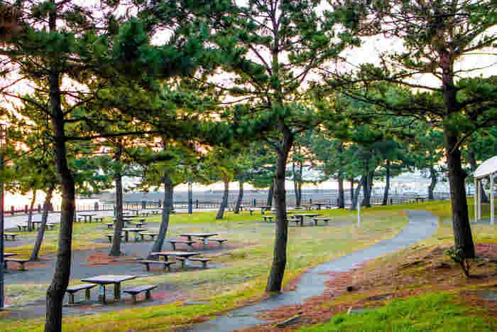 最後にご紹介するのは、横浜のなかでも逗子や鎌倉寄りにある「海の公園」です。シーサイドラインの「海の公園南口」「海の公園柴口」「八景島」の各駅からすぐなので、電車でのアクセスもおすすめ。