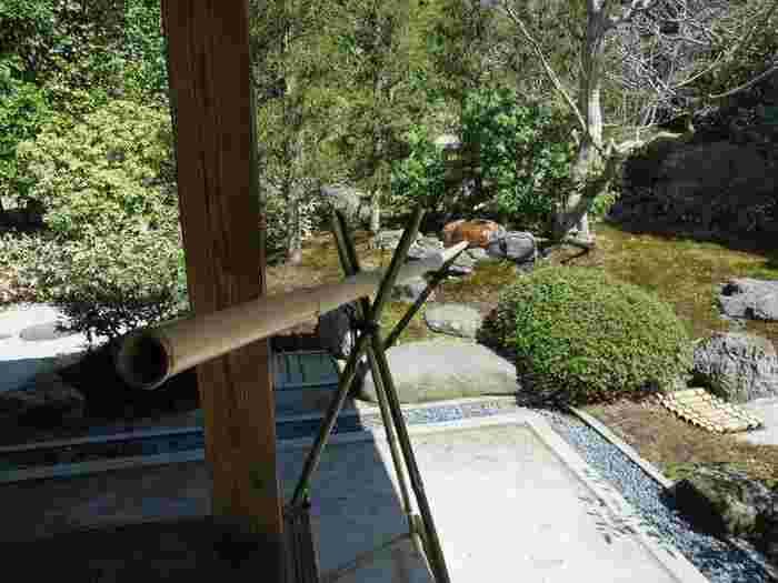 喜泉庵(きせんあん)の水琴窟(すいきんくつ)は、甕(かめ)から長く竹筒が伸びています。その竹筒に耳を近づけると優しい音色が心地よく響いてきます。