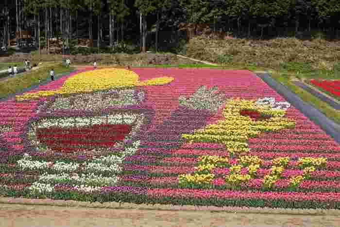 たんとうチューリップまつりは、兵庫県北部の但馬地方を彩る春の風物詩となっています。300品種、100万本のチューリップが開花する様は、壮観でチューリップの花によるフラワーアートは必見です。