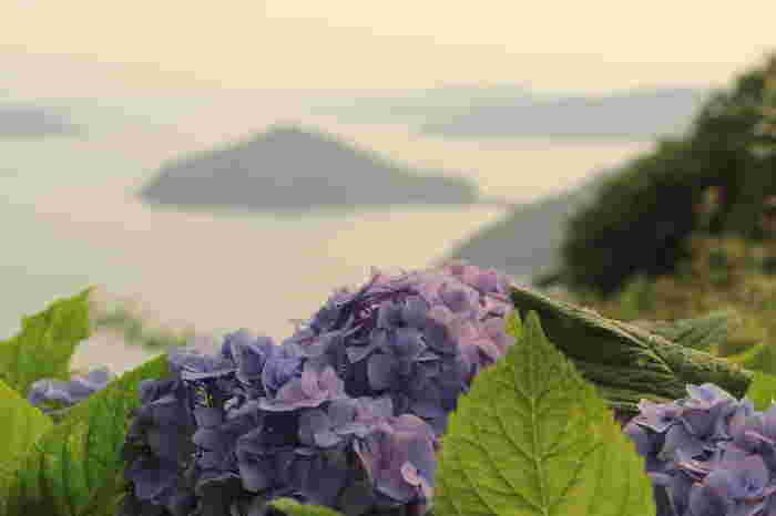 初夏はあじさいが、瀬戸内海に浮かぶ島々の美しい風景をしっとりと引き立たせてくれます。