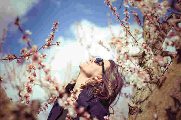 いつもよりゆっくりと意識して呼吸をするだけでも気分がリフレッシュされますよね。 鼻から吸ってお腹に新鮮な空気をためこんだら、また鼻からゆっくりと出す腹式呼吸をすることで、自律神経が整いリラックス効果にも期待できますよ。