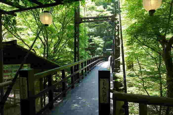 「川の庵(かわのいおり)」は、明治40年創業の老舗旅館「もみぢ家」の別館。川床の客席は、専用の吊橋を渡った先。