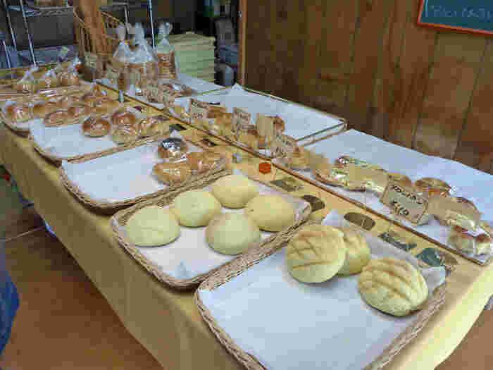 アットホームなお店なのでパンの種類は少なめではありますが、どれもクオリティの高いパンに出会えますよ。メープルシロップがたっぷり練りこまれたラウンド型のパン、「メープルラウンド」や、揚げないタイプの「カレーパン」などが人気商品となっています。