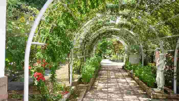 整備されたハーブガーデンには、約200種類のハーブと季節の花々が咲き誇ります。季節の風と香りを感じながら、ゆっくりと歩きましょう。