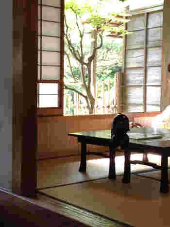お座敷からは、庭を眺めることもができます。椅子席も用意されています。